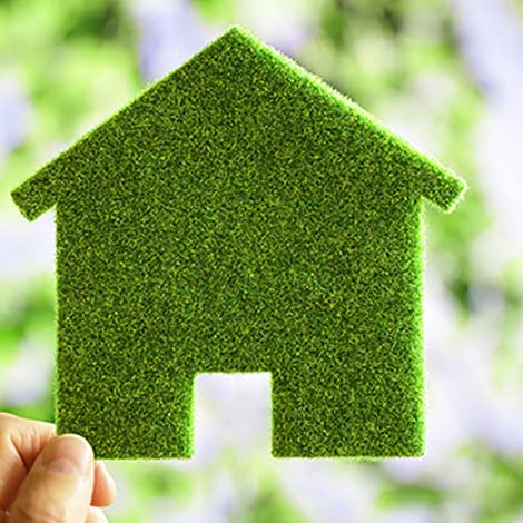 image of a person holding a green carpeted cut out of a home
